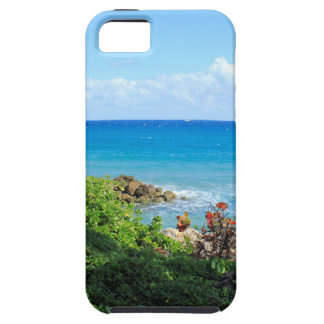 rocky-foliage-coast-deerfield-beach-4s6490 tough iPhone 5 case