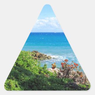 rocky-foliage-coast-deerfield-beach-4s6490 triangle sticker