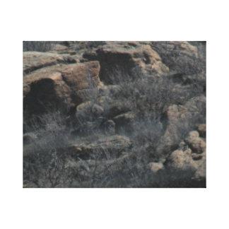 Rocky Hillside Canvas Print