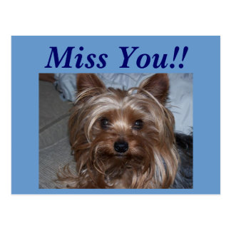 "Rocky ""Miss You!!"" Post Cards"