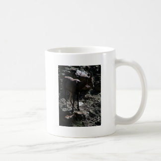 Rocky Mountain Bighorn Sheep, ewe Coffee Mug