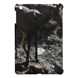 Rocky Mountain Bighorn Sheep, ewe iPad Mini Cover