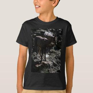 Rocky Mountain Bighorn Sheep, ewe T-Shirt