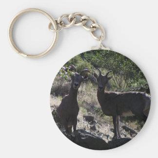 Rocky Mountain Bighorn Sheep Key Ring