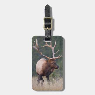 Rocky Mountain Elk Luggage Tag