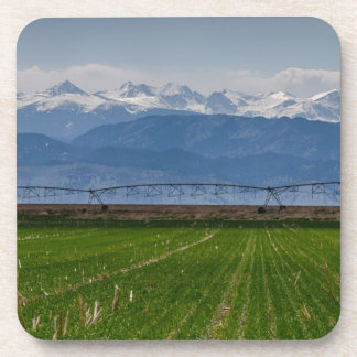 Rocky Mountain Farming View Coaster