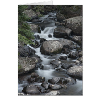 Rocky Mountain National Park Stream Card