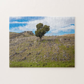 Rocky Mountain Tree Puzzles