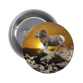 Rocky Mountain Wild Big Horn Sheep Sunset Pinback Buttons