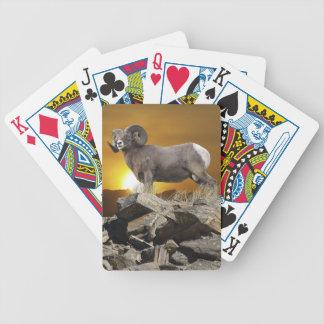 Rocky Mountain Wild Big Horn Sheep & Sunset Poker Deck