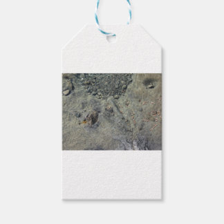 Rocky seabed through transparent sea water gift tags