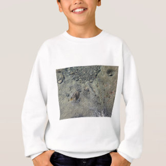 Rocky seabed through transparent sea water sweatshirt