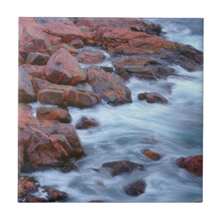 Rocky shoreline with water, Canada Small Square Tile