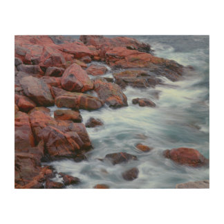 Rocky shoreline with water, Canada Wood Wall Decor