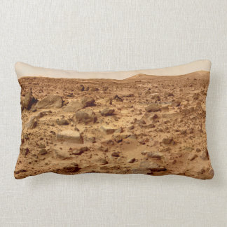 Rocky Surface of Planet Mars Lumbar Cushion