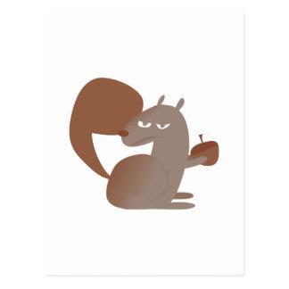 Rodent Squirrel Postcard