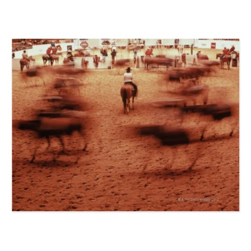 Rodeo arena,blurred motion,Texas, USA Post Card