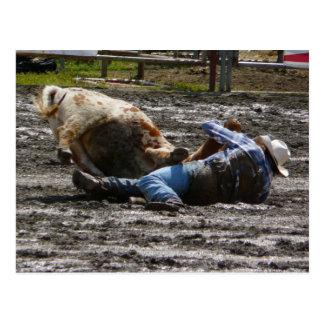 Rodeo Cowboy Steer Wrestling Postcard