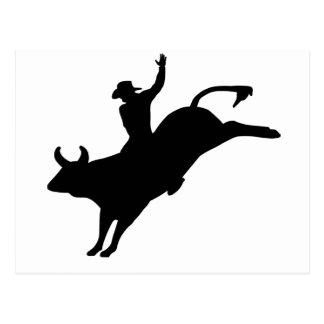 Rodeo Rider Postcard