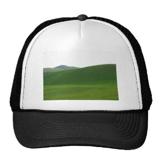 Rolling green hills in Tuscany, Italy Cap