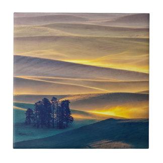 Rolling Hills of Wheat at Sunrise | WA Ceramic Tile