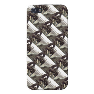 Roma Italy Roman Fountain Sculpture Architecture Case For iPhone 5