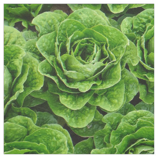 Romaine lettuce field photo fabric