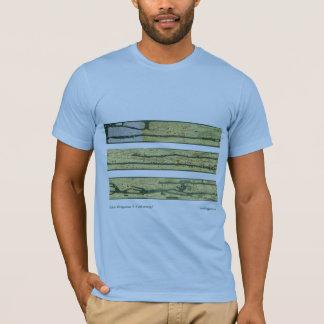 Roman Road Map T-Shirt