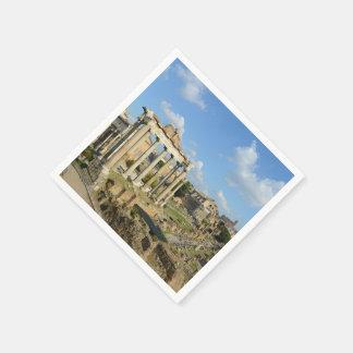 Roman Ruins in Rome Italy Disposable Serviette