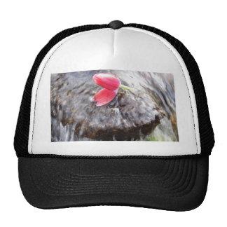 Romance and simplicity cap