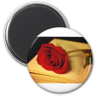 Romance in Literature Magnet