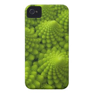 Romanesco Broccoli Fractal Vegetable iPhone 4 Cases