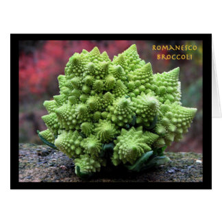 Romanesco Broccoli Vegetable Card