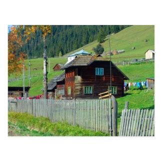 Romania, Moldova, Rural farmhouse Postcard