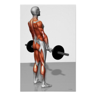 Romanian Deadlift Poster
