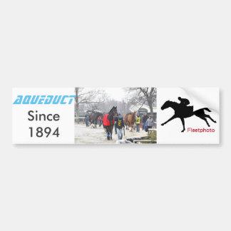 Romanologist Bumper Sticker