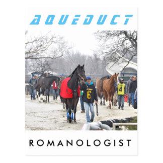 Romanologist Postcard