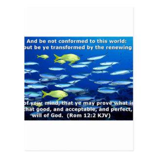 Romans 12:2 postcard