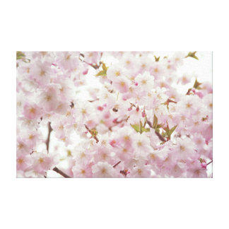 Romantic Cherry Blossoms and Little Bee Canvas Stretched Canvas Print