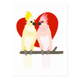 Romantic Cockatoos Postcard