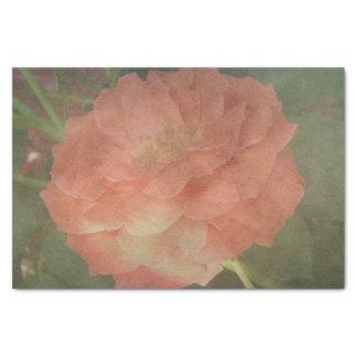 Romantic coral Rose Tissue Paper