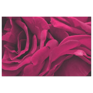 Romantic fuchsia pink velvet roses floral photo tissue paper