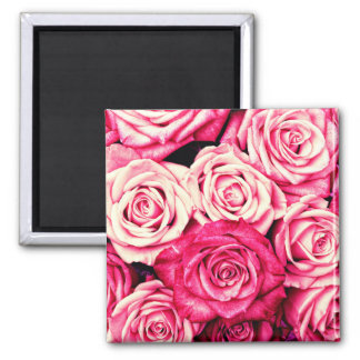 Romantic Pink Roses Magnet