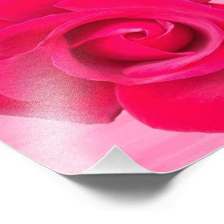 Romantic Red Pink Rose Photo Print