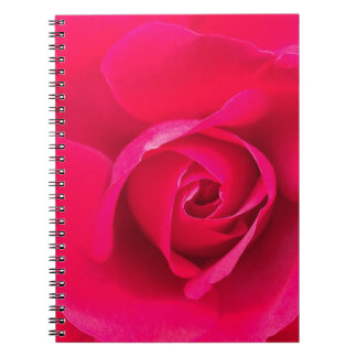 Romantic Red Pink Rose v2 Notebook