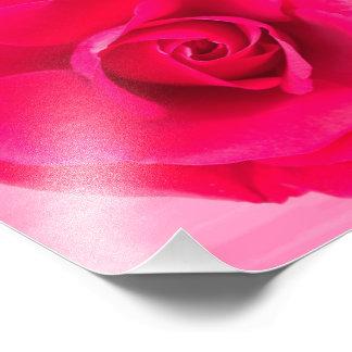 Romantic Red Pink Rose v2 Photo Print