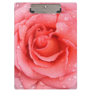 Romantic Red Pink Rose Water Drops Clipboard