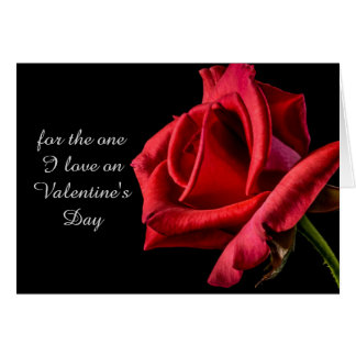 Romantic Red Rose Valentine's Day Card