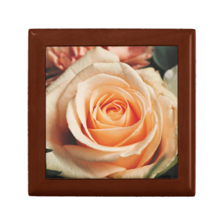 Romantic Rose Pink Rose Small Square Gift Box