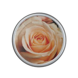 Romantic Rose Pink Roses Floral Flower Bluetooth Speaker